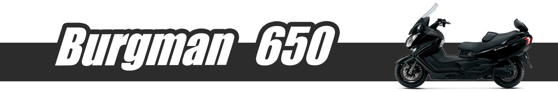 Burgman 650